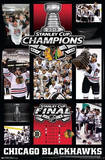 Chicago Blackhawks 2013 Stanley Cup Champions Posters