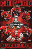 Chicago Blackhawks 2013 Stanley Cup Champions Prints