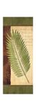 Palm Tropic Panel III Giclee Print by Delphine Corbin