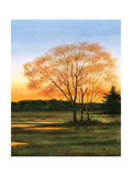 Marsh at Dusk II Poster by William Duke