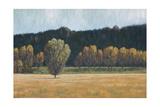 Cottonwood Country I Premium Giclee Print by John Macnab