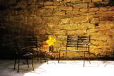 Peaceful Patio I Valokuvavedos tekijänä Alan Hausenflock