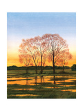 Marsh at Dusk I Prints by William Duke