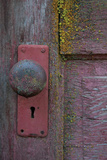 Barn Door Photographic Print by Erin Berzel