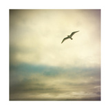 Be Here V Giclee Print by Amy Melious