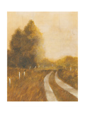 Traveled Path II Premium Giclee Print by Cheryl Martin