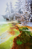 Yellowstone Basin Photographic Print by Howard Ruby