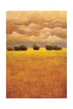 Golden Fields II Premium Giclee Print by Thomas Girard