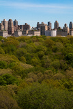 Central Park I Photographic Print by Erin Berzel