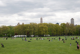Spring in Central Park Photographic Print by Erin Berzel