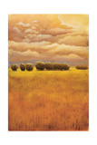Golden Fields I Premium Giclee Print by Thomas Girard