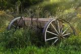 Abandoned Farm Equipment Photographic Print by C. McNemar