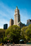 The Woolworth Building Photographic Print by Erin Berzel