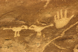Anasazi/Ancient Puebloan Petroglyphs of the Parrot Clan Symbol, Mesa Verde National Park, Colorado Stampa fotografica
