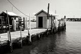 Tangier Island 4 Photographic Print by Alan Hausenflock