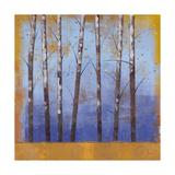 Birch Trees II Premium Giclee Print by Cheryl Martin