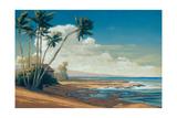 Kona Coast I Giclee Print by Allan Stephenson