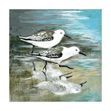 Sea Birds II Giclee Print by Gregory Gorham