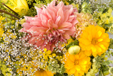 Summer Bouquet I Photographic Print by Maureen Love