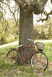 Go by Bike II Photographic Print by Karyn Millet