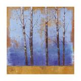 Birch Trees I Premium Giclee Print by Cheryl Martin