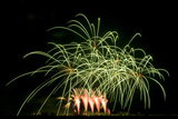 Fireworks at Havasu I Photographic Print by George Johnson