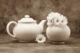 Teapot and Daisies II Fotografie-Druck von C. McNemar