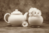 Teapot and Daisies II Photographic Print by C. McNemar