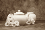 Teapot and Daisies I Photographic Print by C. McNemar