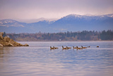 Sandpoint I Photographic Print by Brian Kidd