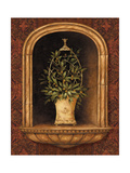 Olive Topiary Niches I Premium Giclee Print by Pamela Gladding