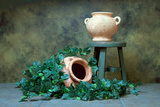 Pottery with Ivy I Photographic Print by C. McNemar