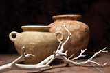 Pottery with Branch I Photographic Print by C. McNemar