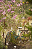 Vintage Bicycle IV Photographic Print by Philip Clayton-thompson