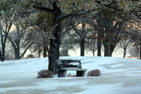 Bench III Photographic Print by Tammy Putman