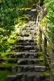 Steps III Photographic Print by Brian Moore