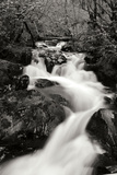 Waterfall II Photographic Print by Brian Moore