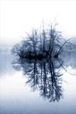 Fog on the Lake II Photographic Print by Alan Hausenflock