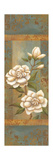 Magnolia Trio I Prints by Ella Belamar