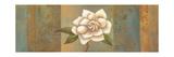 Magnolia Branch I Art by Ella Belamar
