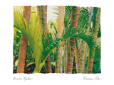 Bamboo Ballet Photographic Print by Maureen Love