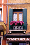 Floral Window Venice I Photographic Print by John Warren