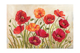 Poppies Giclee Print by Kimberly Poloson