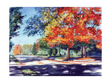 Fall Brilliance II Premium Giclee Print by Todd Williams