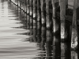 Pier Pilings 12 Photographic Print by Lee Peterson
