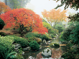 Japanese Garden I Photographic Print by Maureen Love