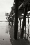 Pier Pilings 17 Photographic Print by Lee Peterson