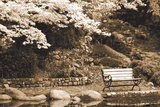 Autumn Trio I Sepia Photographic Print by Vitaly Geyman