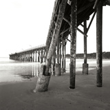 Pier Pilings 19 Photographic Print by Lee Peterson