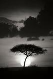 Kenta Sunrise BW Photographic Print by Susann Parker